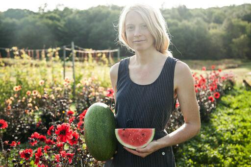 Woman in field holding August Ambrosia watermelon
